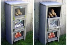 DIY projects. / by Sophie