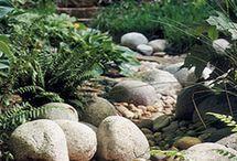 garden ideas / by Sharon Wright Wegner