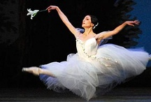 Ballerinas...Tutus...Costumes / by Barb Smith