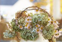 Floral Arrangements / by Jamie Frank Renshaw