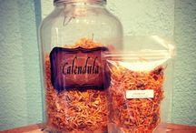 #tea / by CoLo