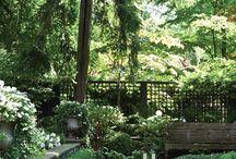 Outdoor / GREENERY!!!!!! / by Veronica Kalashnik