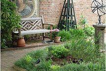 Herbs / by Gift Corner