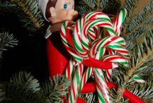 Elf on the shelf / by Tonya Gross