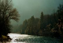 River / by Emily Willis