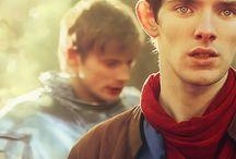 Merlin / by Moani Andresen