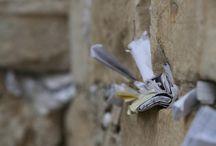 Jerusalem / by Mandy Johnson