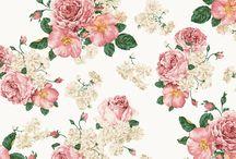 patterns. / by Megan Olson