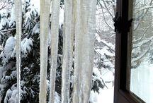 Winter / by Slim Paley