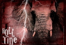 Roll Tide Roll!!! / by Mandy Duvall