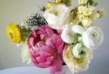 ✿ flower / by Rkm Maepratoo