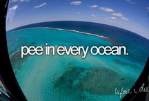 Bucket List / by Fallon Mesaros