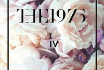 The 1975 / by Courtney P