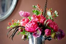 Green Thumb. Floral Arrangements. / by Melissa DeBuck