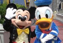 Disney Magic and Fun / Everything Disney & more Disney! / by Brad Nash