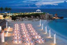 Wedding Ideas - May 6, 2013 (Bahamas) & Reception - November 9, 2013!! / Ideas for Norma's wedding!!!! / by Norma