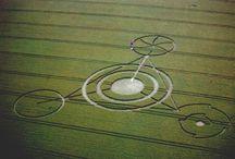 Crop Circles / by Jonele Nash