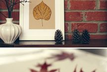 Leaf pressing / by Vicki Vares