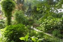 Just Beautiful / by Paul J. Ciener Botanical Garden