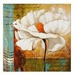 Home Decor / by Norma Nelson