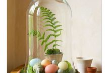 Terrariums / by National Home Gardening Club