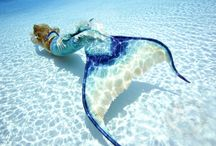 Mermaids If Only Real... / by Heather Neuman