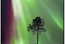 Aurora Borealis / by LeeAnn Monti