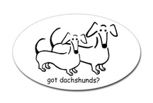 doxies and german shepards love! / by Barbara Unsworth