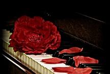 Music<3 / by Hailyn Bryant