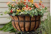 Gardening / by Denise Cwalina