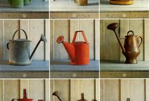 watering cans & buckets / by Camille Pare