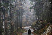 beautiful places / by Cathy Bizri