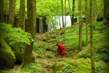 Outdoor & Nature Play / by Bethe Almeras