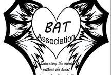BadAssTeachers In The News ! / by Bad Ass Teacher Association