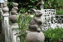 Bunnies / by Joan Witter