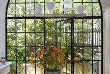Windows / by Suzanne Shumaker
