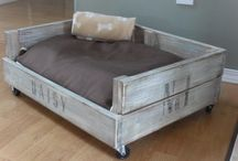 dog bed DIY / by Misty Miears