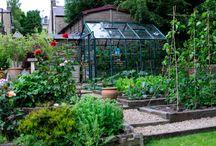 Gardening (Food) / by Kristi Herndon