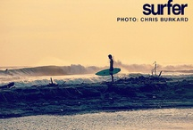 surfer / by Taylor Boney