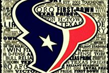 Love My Texans  / by Monica Weinberg