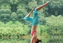 Yoga Inspiration / by Samahita Retreat