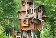 tree houses / by Nina Arias