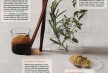 Herbal Remedies / by Brandi C