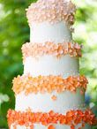 Wedding Ideas / by Teresa Mikkelsen