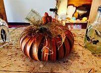 Pumpkin / by Stacy Mitcham