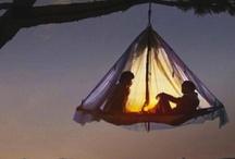 Camping / by Carol Trujillo