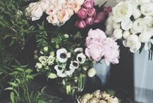 Florals / by AnnaMarie Edwards