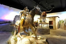 Museums of Texas / by San Antonio Express-News