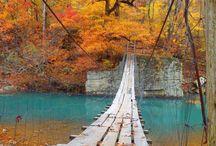 Arkansas / by Jean Christi
