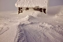Winter / by Shirleyann Ryan